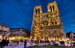 Wallpapers holiday France Paris tree New Year area Notre Dame
