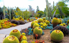 Wallpapers 3840x2400 Botanical garden San marino