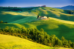 Wallpapers sunlight Tuscany countryside Italy nature trees