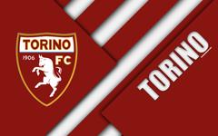 wallpapers Torino FC logo 4k material design football