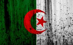 wallpapers Algerian flag 4k grunge flag of Algeria