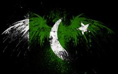 Pakistan Flag in Eagle Shape HD Wallpapers