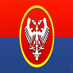 Medieval Serbian flag