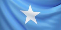 learn somali flashcards on Tinycards