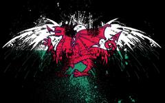 Flags Eagle Welsh Graffiti American