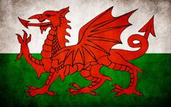 Welsh Flag wallpaper 1920 x 1200