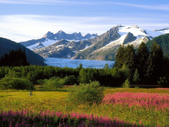 nature alaska wallpapers Widescreen HD wallpapers