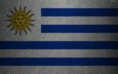 wallpapers Flag of Uruguay 4k leather texture Uruguayan