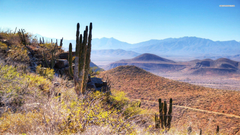 Desert In Baja California