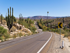 Accessibility the new road to San Felipe makes it much easier to