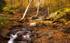 Delaware Water Gap wallpapers