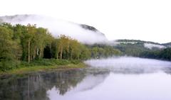 Delaware Tag wallpapers Geese Dog Delaware River Wallpaper River