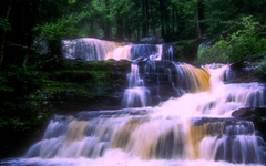 Waterfalls near delaware water gap PA