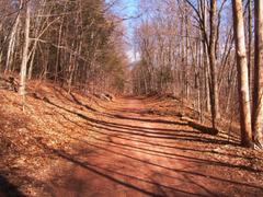 Forests Quinnipiac River Gorge Rail Trail Connecticut Blue Sky Path
