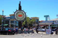 Fishermans Wharf San Francisco Travel Wallpapers