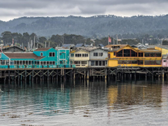 Fisherman s Wharf Monterey Whalefest Jan 24
