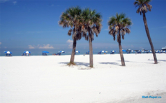 Clearwater Florida Wallpapers