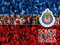 Group of Chivas De Guadalajara Wallpapers
