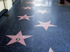 The Famous Hollywood Walk of Fame Los Angeles