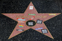 The West Hollywood City Council wants to remove Trump s Walk of Fame