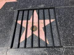 Walk of Shame A Guerrilla Artist Put Donald Trump s Hollywood Star