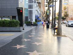The Guide to the Hollywood Walk of Fame Ceremony