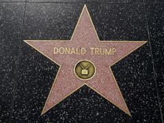 Trump s Hollywood Walk of Fame star vandalised again