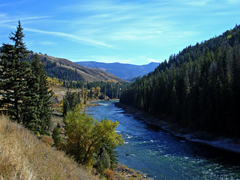 River Trees Mountains Idaho Snake Wallpapers Hd
