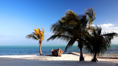 MK Florida Keys Pictures Wallpaper 40 Beautiful Florida Keys