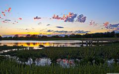 Wetlands Lawrence Kansas 4K HD Desktop Wallpapers for 4K Ultra