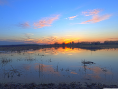 Baker Wetlands Kansas 4K HD Desktop Wallpapers for 4K Ultra HD TV