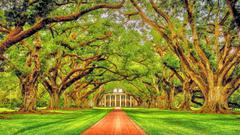 Oak Alley Plantation Louisiana HDR Wallpapers desktop