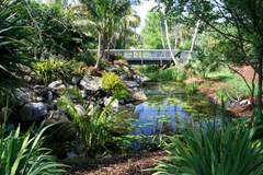 Photo USA Missouri Botanical Garden Nature Bridges Gardens 3000x2000