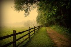 usa pennsylvania united states pennsylvania fence road fog tree