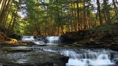 Pennsylvania Tag wallpapers Forest Logan Usa Nature Run Falls
