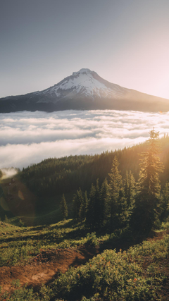 Wallpapers of the Month Oregon Summer
