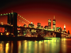 We Shall Not Forget New York City New York