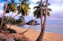 wallpapers Santo Domingo Repubblica Dominicana sea Palms