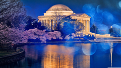 Thomas Jefferson Memorial Cherry Blossom 4K HD Desktop Wallpapers