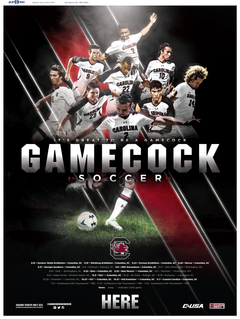University of South Carolina Official Athletic Site