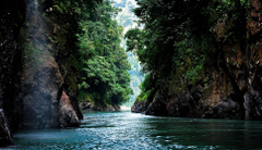 Pacuare River 1 Day Expedition