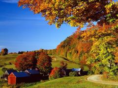 Landscapes Woodstock In Autumn Vermont