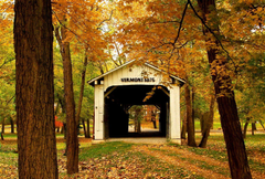 Vermont Bridge Serenity Patyh America Forest Branches Park Calm