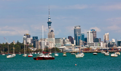 Auckland Wallpaper Backgrounds