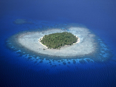 Coral Reefs Micronesia