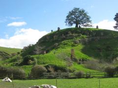 Hobbiton The Shire