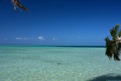 Next Stop the World Leleuvia Island Resort Weekend