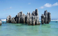 Plantur Turismo on Best Destinations