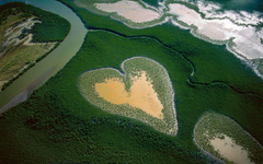 Heart in Voh New Caledonia French Territory widescreen wallpapers