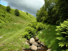 Caledonia Tag wallpapers Stream Grass Green Rock Sky Cloudy